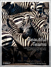 Cover image for Beautiful Teams
